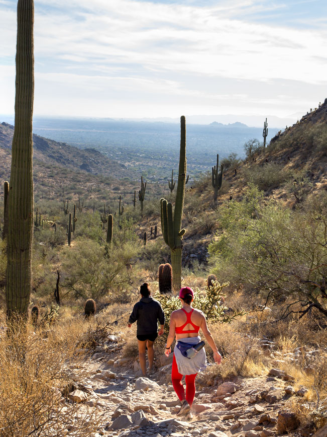 Hikers, Gateway Hiking Trail Loop, South Side, Arizona, Scottsdale, Phoenix Area Hiking Trail, Moderate Hiking Trail, Dog Friendly Hiking Trail, Pass, McDowell Mountains, Saguaros, Copyright azutopia.com, No use without permission